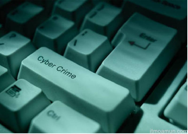 อาชญากรรมออนไลน์, อาชญากรรมปี 2011
